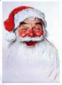 。*:゜☆ Merry  Christmas ☆゜:。*。