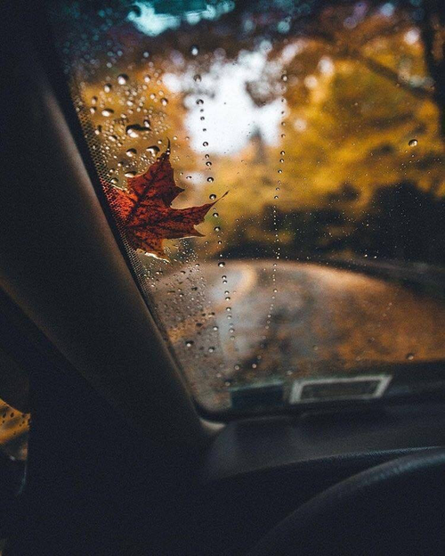 rainyyyy.png