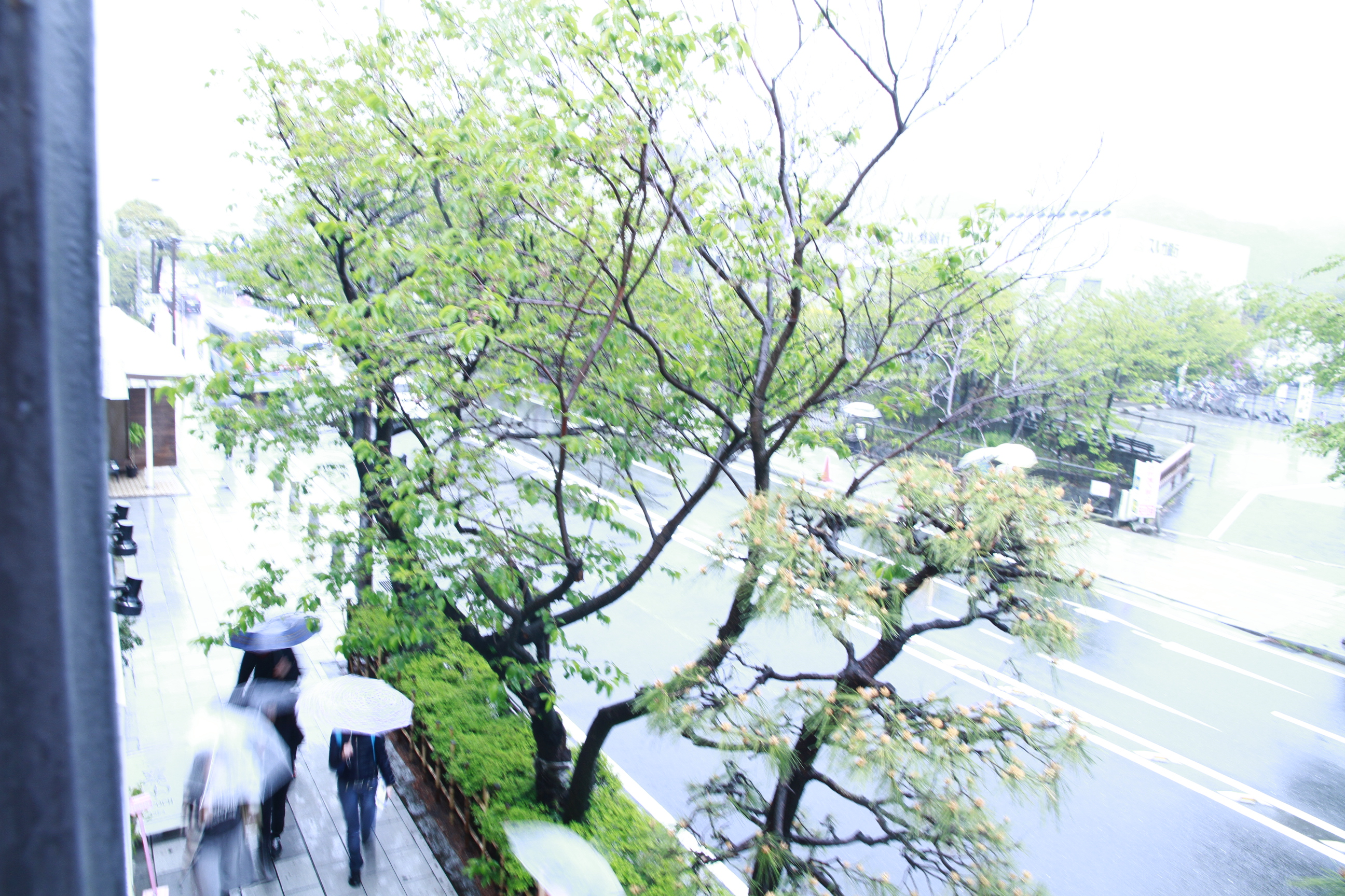 beautrium 鎌倉小町