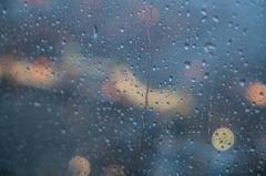 梅雨に向かいます