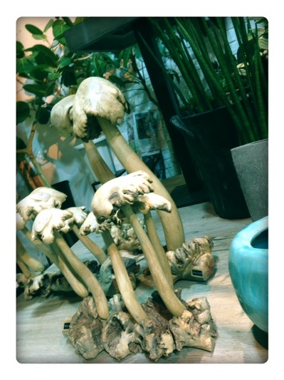 写真 1.JPGのサムネイル画像