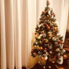 クリスマス装飾♪