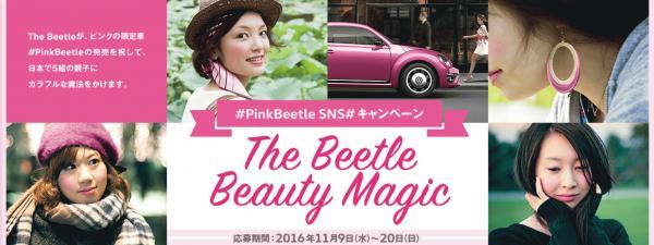 pinkbeetle_hairmakeup_igarishinobu.jpg